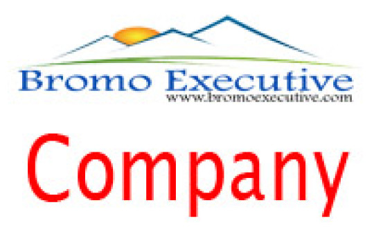 Bromo Executive Company