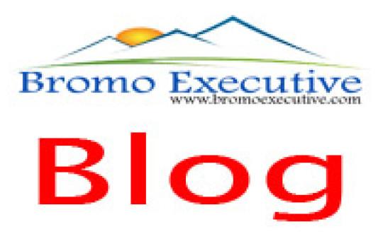 Bromo Executive Blog